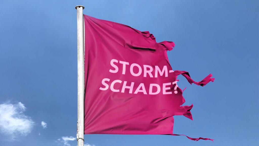 Questo - Nieuws - Stormschade?